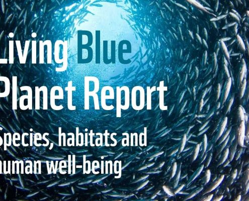 Living Blue Planet Report