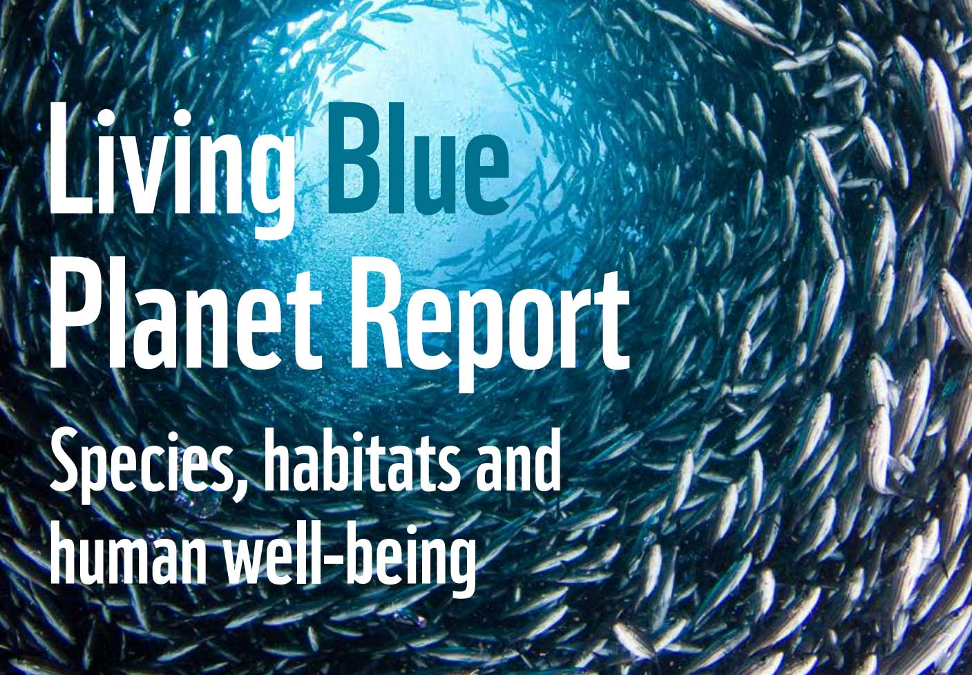 A Special Edition on Ocean Protection - </br>Blue Living Planet Report 2015
