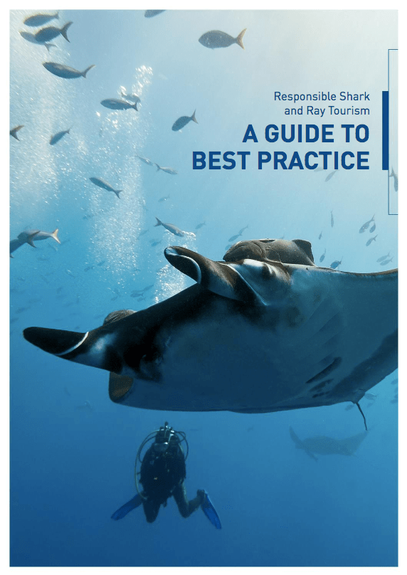 Shark and Ray best practice tourism